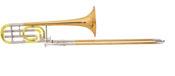P20_trombon