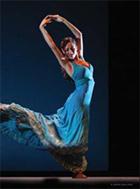 danza  XVII CERTAMEN DE COREOGRAFÍA DE DANZA ESPAÑOLA Y FLAMENCO 2008