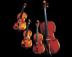 Cuarteto Paganini © Nippon Music Foundation