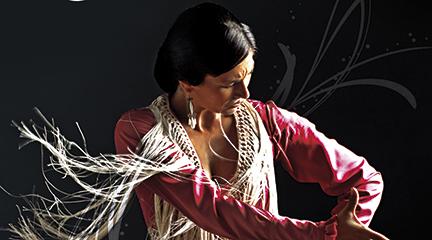 espanola  El Museo Interactivo de la música se pone flamenco