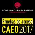 Curso avanzado de Especialización Orquestal. Santiago de Compostela