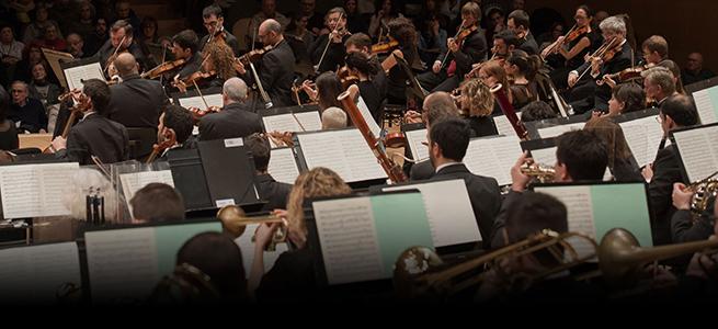 pruebas de acceso  Audiciones de la Orquestra Simfònica de Barcelona i Nacional de Catalunya