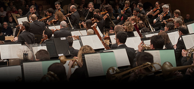 pruebas de acceso  Audiciones de violonchelo de la Orquestra Simfònica de Barcelona i Nacional de Catalunya