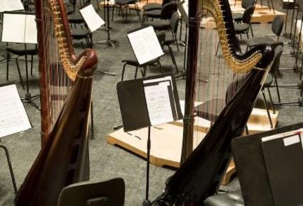 pruebas de acceso  Audiciones para arpa de la Euskadiko Orkestra Sinfonikoa