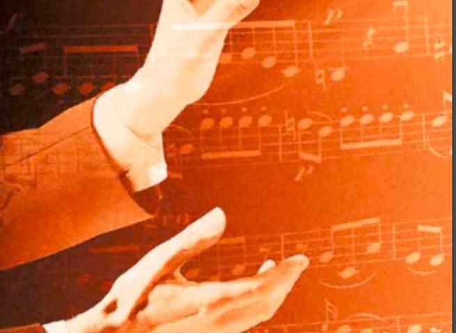 universidad  Grado en Musicología de la Universidad Complutense de Madrid